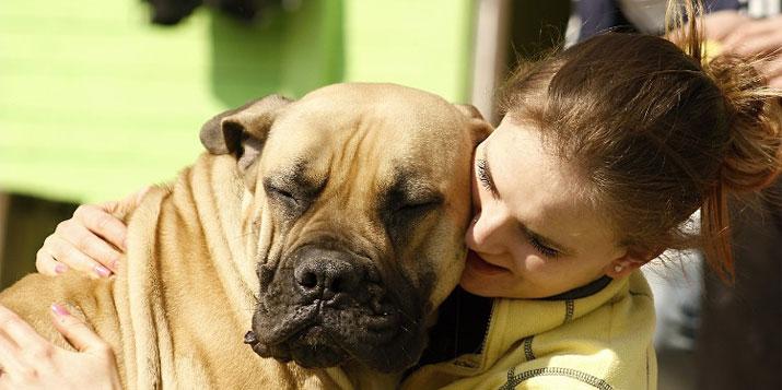 Las mascotas ideales para Aries